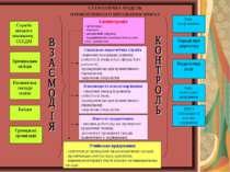 СХЕМАТИЧНА МОДЕЛЬ ПРЕВЕНТИВНОГО ВИХОВАННЯ НВК№2 Адміністрація - організація; ...