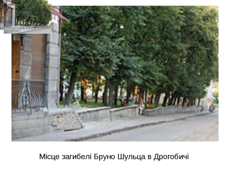 Місце загибелі Бруно Шульца в Дрогобичі