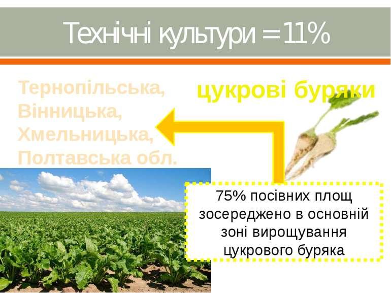 Технічні культури = 11%