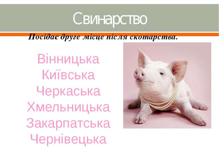 Свинарство