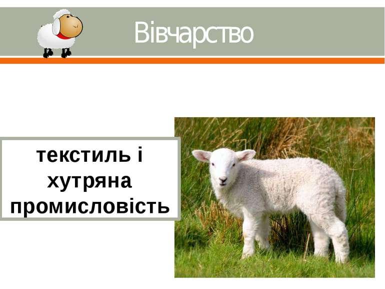 Вівчарство