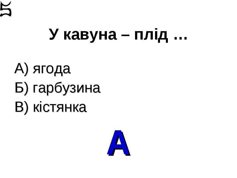 У кавуна – плід … А) ягода Б) гарбузина В) кістянка А