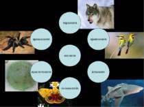 Біологічні дисципліни
