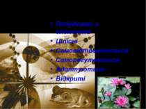 Біологічні системи Побудовані з елементів Цілісні Самовідтворюються Саморегул...