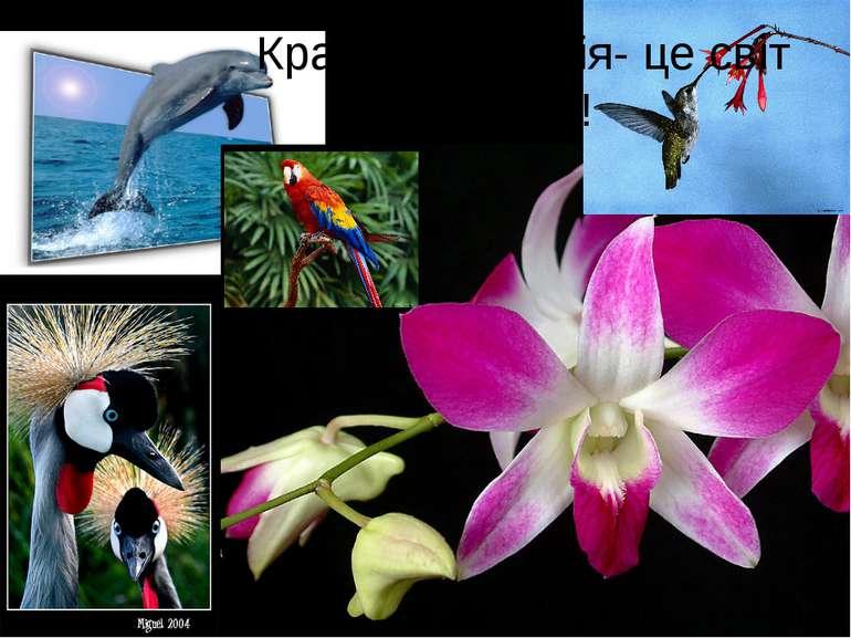 Краса і гармонія- це світ життя!