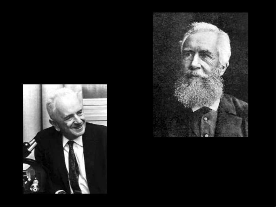 Феодосій Добжанський, ( Україна – США, 1900-1975), один з авторів СТЕ Ернест ...