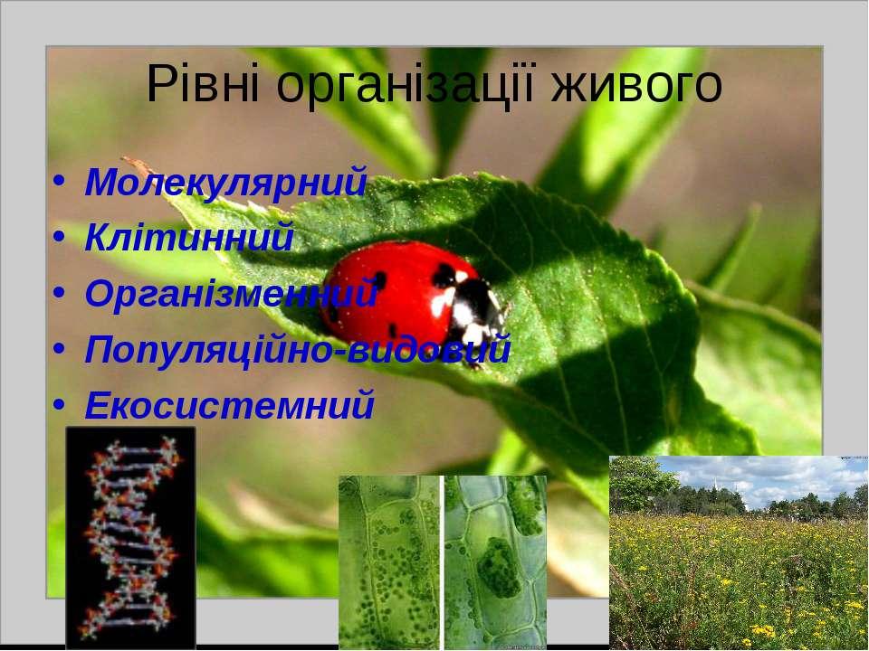 Рівні організації живого Молекулярний Клітинний Організменний Популяційно-вид...