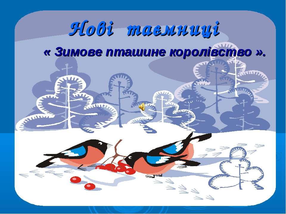 Нові таємниці « Зимове пташине королівство ».
