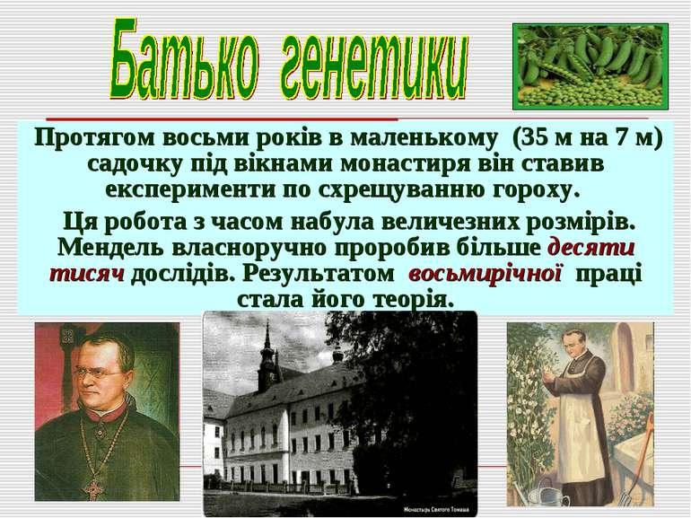 Протягом восьми років в маленькому (35 м на 7 м) садочку під вікнами монастир...
