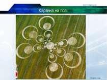 Картина на полі www.themegallery.com Company Logo Company Logo