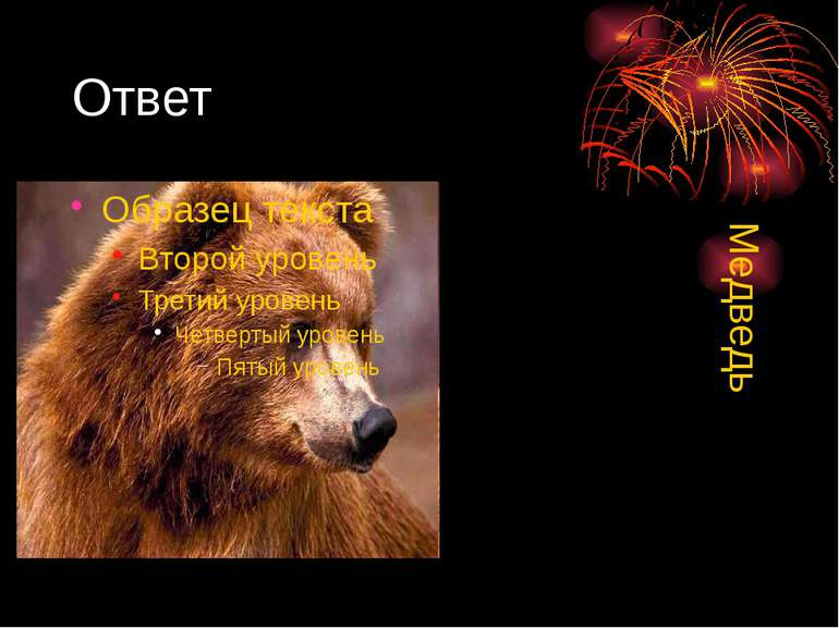 Ответ Медведь
