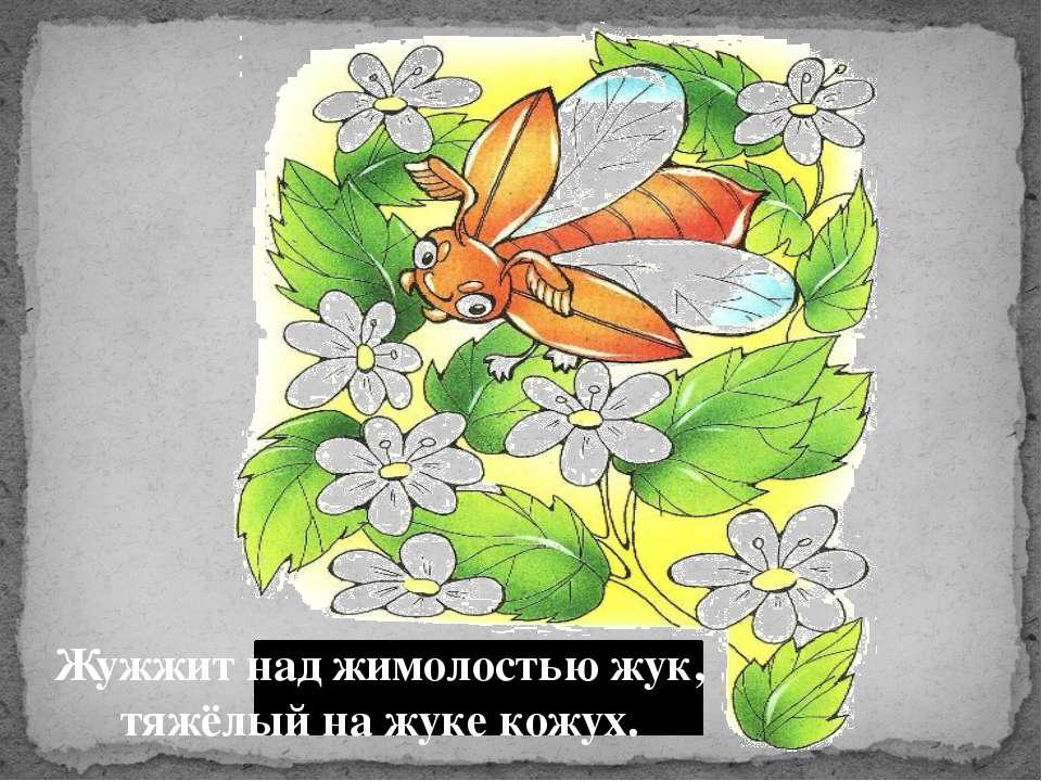 Жужжит над жимолостью жук, тяжёлый на жуке кожух.