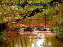 """Особливості композиції твору """"Лісова пісня"""" складається з прологу і трьох час..."""