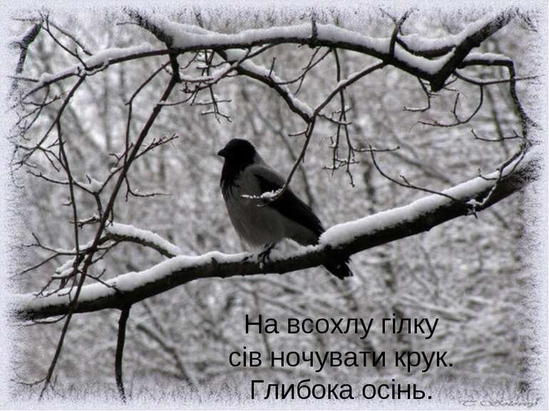 На всохлу гілку сів ночувати крук. Глибока осінь.