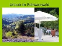 Der Schwarzwald im Süden Deutschlands ist weltweit bekannt. Millionen von Bes...