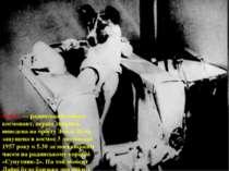 Лайка — радянський собака- космонавт, перша тварина, виведена на орбіту Землі...