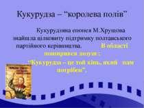 """Кукурудза – """"королева полів"""" Кукурудзяна епопея М.Хрущова знайшла цілковиту п..."""