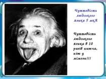 Чуттєвість людського язика в 10 разів нижча, ніж у мімози!!! Чуттєвість людсь...
