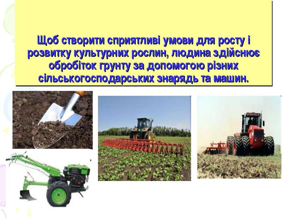 Щоб створити сприятливі умови для росту і розвитку культурних рослин, людина ...