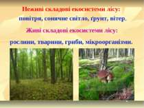 Неживі складові екосистеми лісу: повітря, сонячне світло, ґрунт, вітер. Живі ...