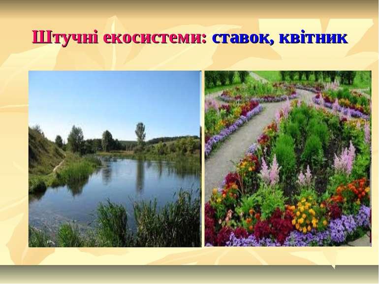 Штучні екосистеми: ставок, квітник
