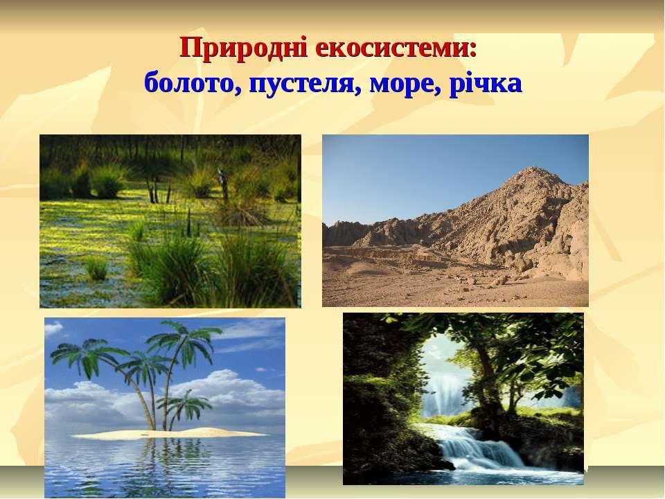 Природні екосистеми: болото, пустеля, море, річка