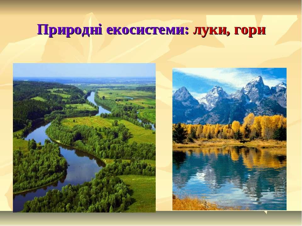 Природні екосистеми: луки, гори