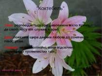 Тема: розповідається про дивовижне місто Криму, де свого часу він служив в ар...