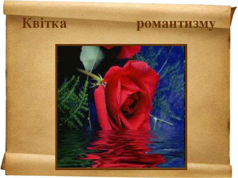 Квітка романтизму