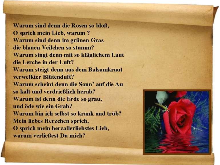Warum sind denn die Rosen so bloß, O sprich mein Lieb, warum ? Warum sind den...