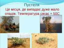 Пустеля Це місця, де випадає дуже мало опадів. Температура сягає + 50С