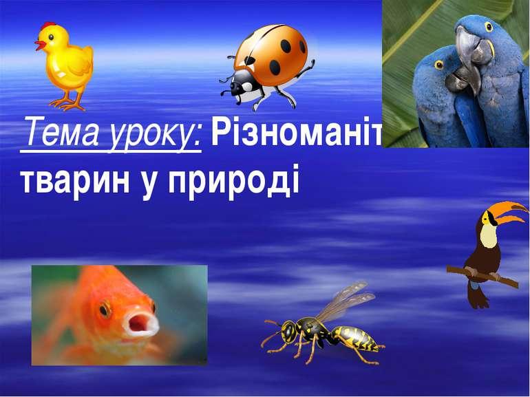 Тема уроку: Різноманітність тварин у природі