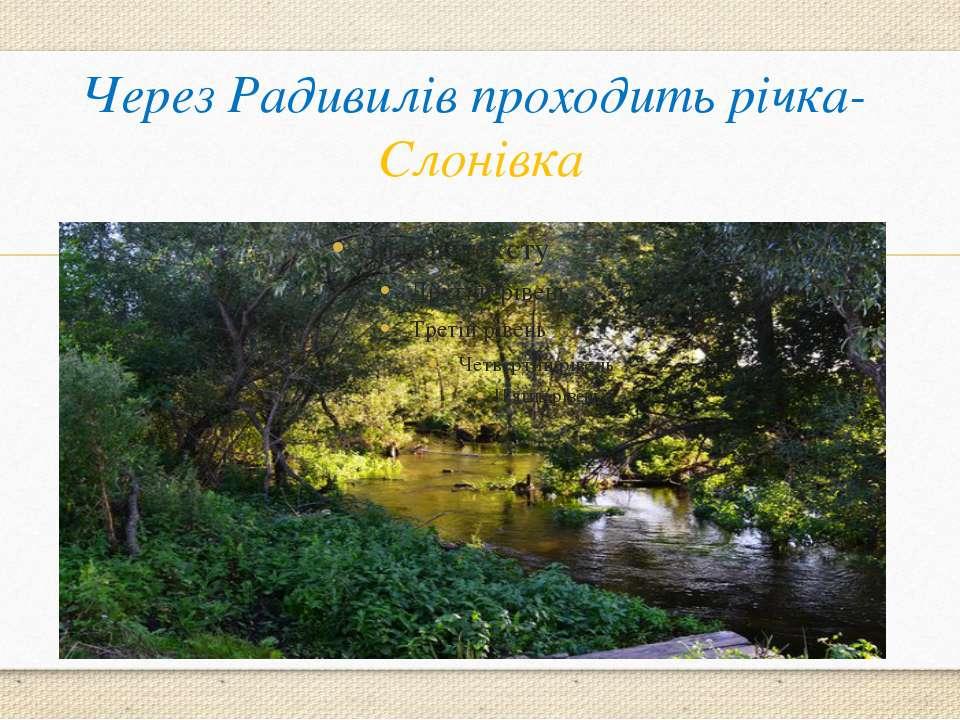 Через Радивилів проходить річка- Слонівка