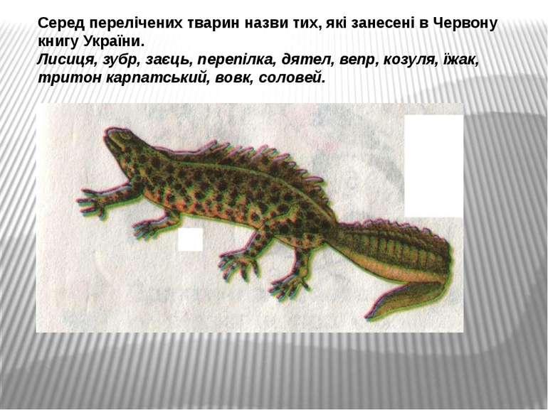 Серед перелічених тварин назви тих, які занесені в Червону книгу України. Лис...