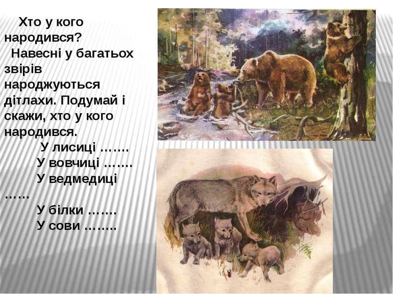 Хто у кого народився? Навесні у багатьох звірів народжуються дітлахи. Подумай...