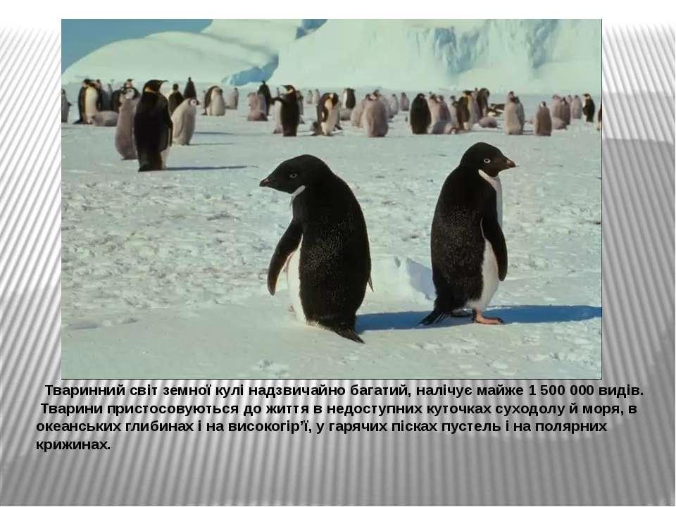 Тваринний світ земної кулі надзвичайно багатий, налічує майже 1500000 видів...