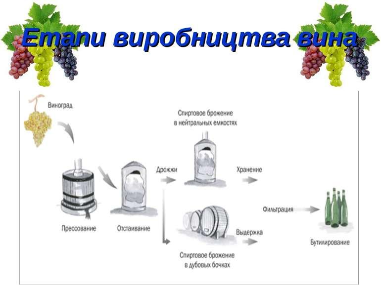 Етапи виробництва вина