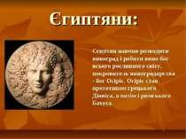 Єгиптяни: Єгиптян навчив розводити виноград і робити вино бог всього рослинно...