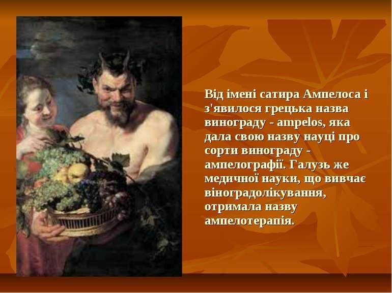 Від імені сатира Ампелоса і з'явилося грецька назва винограду - ampelos, яка ...