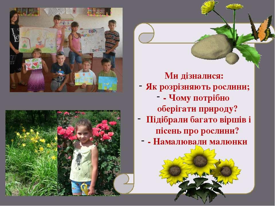 Ми дізналися: Як розрізняють рослини; - Чому потрібно оберігати природу? Піді...
