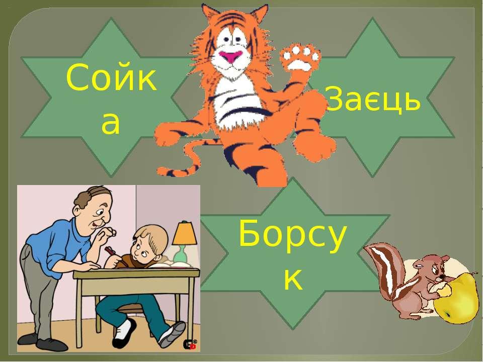 Борсук Сойка Заєць