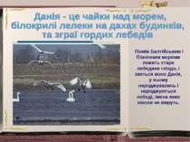 Поміж Балтійським і Північним морями лежить старе лебедине гніздо, і зветься ...