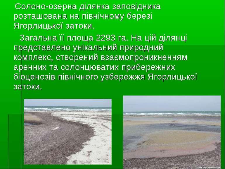 Солоно-озерна ділянка заповідника розташована на північному березі Ягорлицько...
