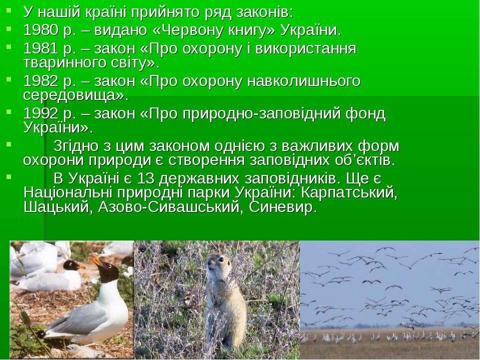 У нашій країні прийнято ряд законів: 1980 р. – видано «Червону книгу» України...
