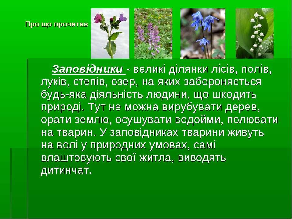 Заповідники - великі ділянки лісів, полів, луків, степів, озер, на яких забор...