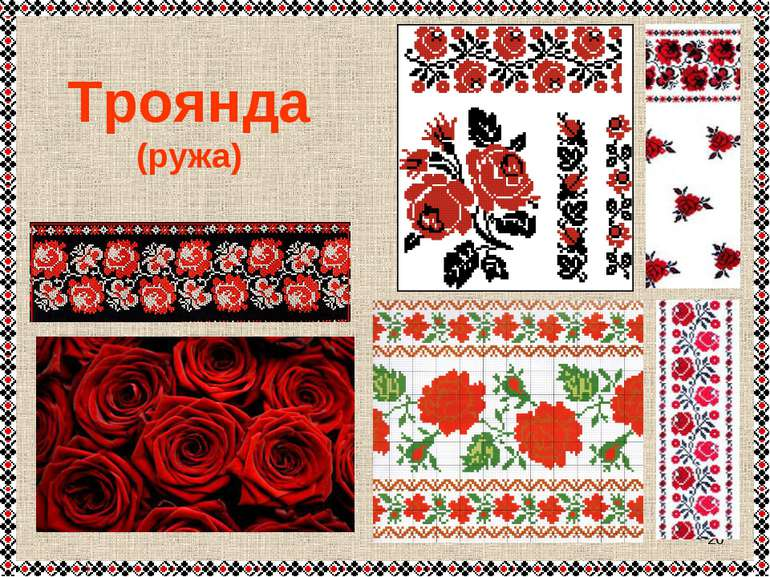 * Троянда (ружа)