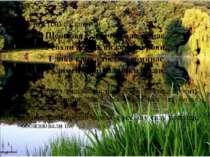 Ліна Костенко словами Ще назва є, а річки вже немає, Усохли верби, вижовкли р...