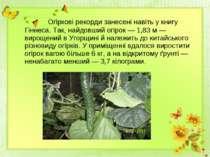 Огіркові рекорди занесені навіть у книгу Гіннеса. Так, найдовший огірок — 1,8...