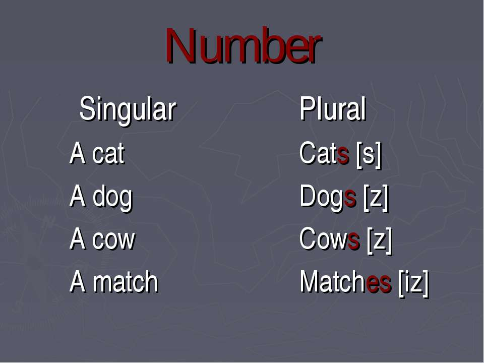 Number Singular A cat A dog A cow A match Plural Cats [s] Dogs [z] Cows [z] M...