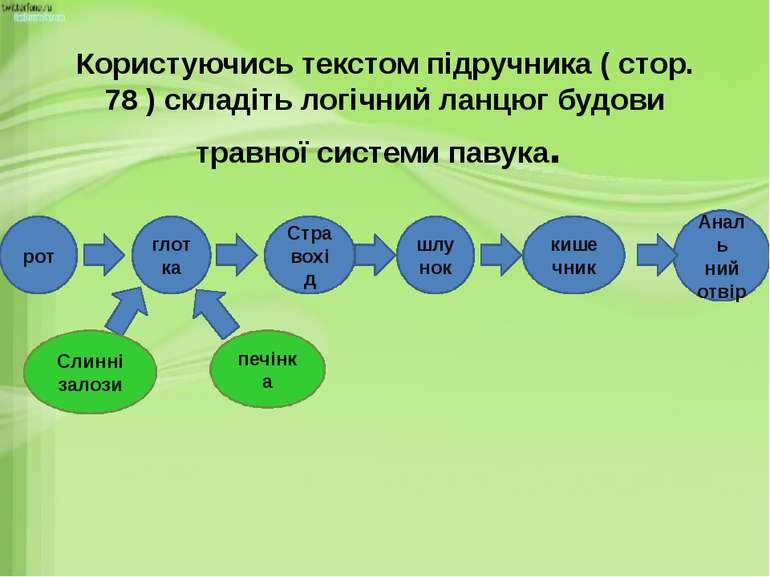 Користуючись текстом підручника ( стор. 78 ) складіть логічний ланцюг будови ...